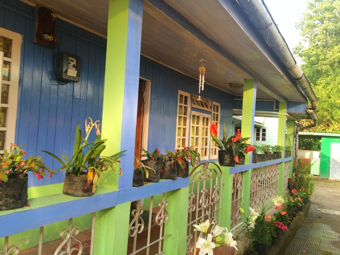 The Glenmarie homestay at Takdah tea estate.