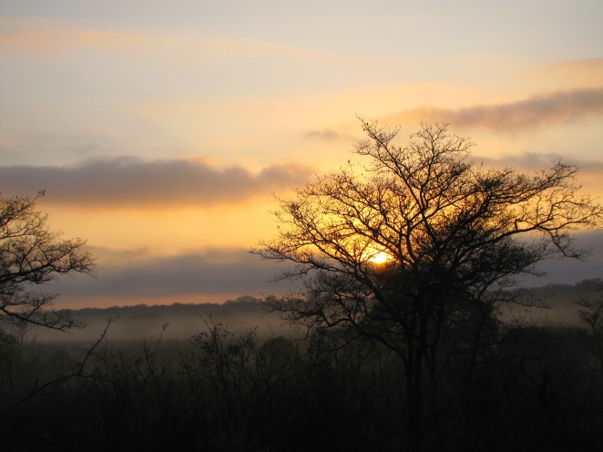 Sunrise at Kruger!