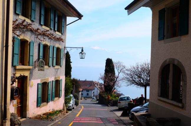 Five-Switzerland-Beauty-travel-rivaz-wine-lavaux